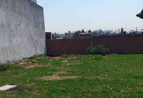 Foto de terreno habitacional en venta en  , plan de ayala infonavit, morelia, michoacán de ocampo, 14340364 No. 01