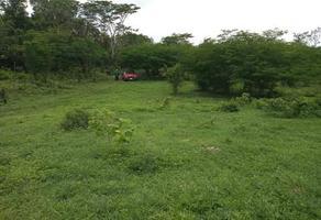 Foto de terreno habitacional en venta en plan de ayala s/n , pucte, othón p. blanco, quintana roo, 18628294 No. 01
