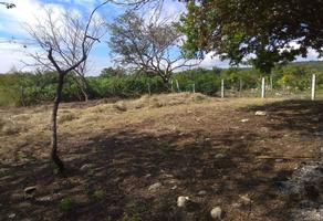 Foto de terreno habitacional en venta en  , plan de ayala, tuxtla gutiérrez, chiapas, 18372106 No. 01