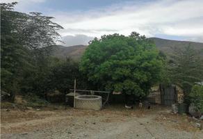 Foto de terreno habitacional en venta en  , plan de ayala, tuxtla gutiérrez, chiapas, 20066647 No. 01