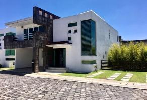 Foto de casa en renta en plan de ayutla 100, la providencia, metepec, méxico, 0 No. 01