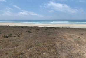 Foto de terreno habitacional en venta en plataforma s/n , unidad ecológica punta escondida, santa maría colotepec, oaxaca, 0 No. 01
