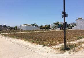 Foto de terreno habitacional en venta en playa boca de tomates , nuevo vallarta, bahía de banderas, nayarit, 0 No. 01