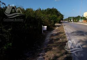 Foto de terreno habitacional en renta en  , playa del carmen centro, solidaridad, quintana roo, 0 No. 01