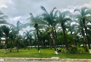 Foto de terreno habitacional en venta en playa diamante , playa diamante, acapulco de juárez, guerrero, 0 No. 01