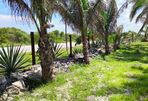 Foto de terreno habitacional en venta en  , playa norte, carmen, campeche, 14251887 No. 01