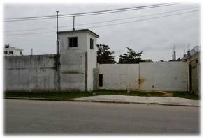 Foto de terreno habitacional en renta en  , playa norte, carmen, campeche, 14917075 No. 01