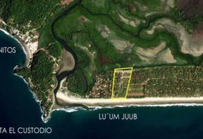 Foto de terreno habitacional en venta en playa tortugas 4, otates y cantarranas, compostela, nayarit, 20086939 No. 01