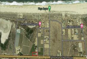 Foto de terreno habitacional en venta en plutarco elias calles , plutarco elias calles, la paz, baja california sur, 0 No. 01