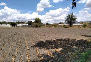Foto de terreno habitacional en venta en población san félix hidalgo lote 1, san félix hidalgo, atlixco, puebla, 0 No. 01
