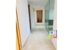 Foto de oficina en renta en  , polanco iii sección, miguel hidalgo, df / cdmx, 0 No. 01