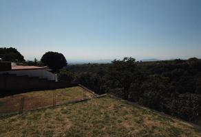 Foto de terreno habitacional en venta en poniente lomas verde , lomas de tetela, cuernavaca, morelos, 17644270 No. 08