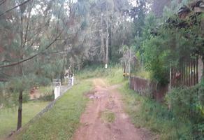 Foto de terreno habitacional en venta en pontezuelas 0 , charo, charo, michoacán de ocampo, 12053722 No. 01