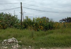 Foto de terreno habitacional en venta en popocatepetl (parcela 12 potrero del trigo) s/n , juan de la barrera, san pedro tlaquepaque, jalisco, 5445790 No. 03