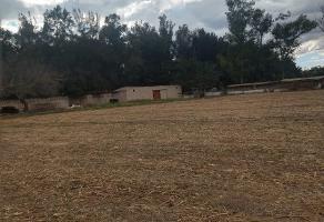 Foto de terreno habitacional en venta en potrero el llano , el zapote del valle, tlajomulco de zúñiga, jalisco, 12015478 No. 01