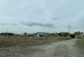 Foto de terreno habitacional en venta en potrero san isidro lote 14, el zapote del valle, tlajomulco de zúñiga, jalisco, 0 No. 01