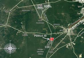 Foto de terreno industrial en venta en  , poxila, umán, yucatán, 15313703 No. 01