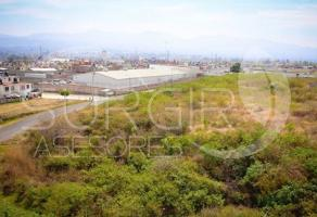 Foto de terreno habitacional en renta en  , praderas del quinceo, morelia, michoacán de ocampo, 0 No. 01