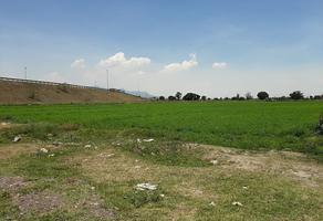 Foto de terreno industrial en venta en  , prados san francisco, nextlalpan, méxico, 0 No. 01
