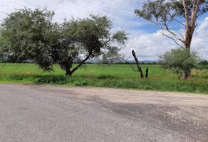 Foto de rancho en venta en predio el vallado poblado cotzio s/n , tarimbaro, tarímbaro, michoacán de ocampo, 5399137 No. 01