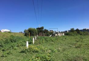 Foto de terreno habitacional en venta en predio llano grande , san rafael tlanalapan, san martín texmelucan, puebla, 0 No. 01