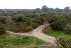 Foto de terreno habitacional en venta en predio los conejos s n , tlaxinacalpan, tepeji del río de ocampo, hidalgo, 12823266 No. 01