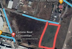 Foto de terreno habitacional en venta en predio nopal y carril oriente méxico-cuautla , industrial chalco, chalco, méxico, 0 No. 01