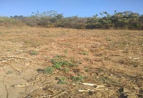 Foto de terreno comercial en venta en predio rústico denominado totlan , ahuatlán, totolapan, morelos, 18990820 No. 01