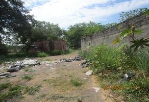 Foto de terreno comercial en renta en predio rústico el tecolote kilometro 7 del libramiento ejercito mexicano. 0, el tecolote, colima, colima, 14851386 No. 01