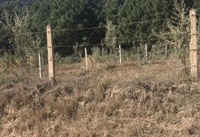 Foto de terreno habitacional en venta en predio rústico la primavera. calle primavera , bosques de la primavera, zapopan, jalisco, 14374991 No. 01