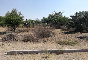 Foto de terreno habitacional en venta en  , presa escondida, tepeji del río de ocampo, hidalgo, 0 No. 03