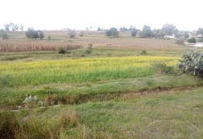 Foto de terreno habitacional en venta en presa nueva , los gavilanes, aculco, méxico, 10322954 No. 01