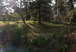 Foto de terreno habitacional en venta en primera cerrada de bugambilias , santa rita tlahuapan, tlahuapan, puebla, 16310506 No. 01