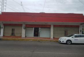 Foto de local en renta en primero de mayo , felipe carrillo puerto, ciudad madero, tamaulipas, 18557912 No. 01