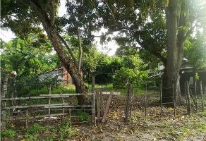 Foto de terreno habitacional en venta en  , barrio del cementerio, pueblo viejo, veracruz de ignacio de la llave, 11314699 No. 01