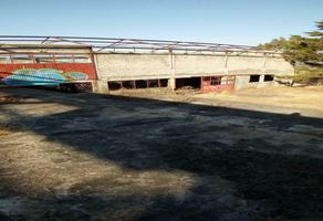 Foto de terreno comercial en venta en  , primo tapia (santa ana chapitiro), pátzcuaro, michoacán de ocampo, 0 No. 01