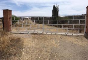 Foto de terreno habitacional en venta en principal 0, san pablo tolimán, tolimán, querétaro, 15256031 No. 01
