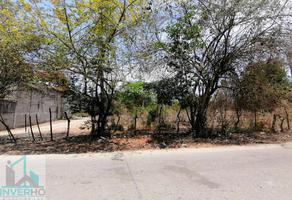 Foto de terreno habitacional en venta en principal 22, el arenal, acapulco de juárez, guerrero, 0 No. 01