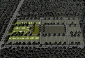 Foto de terreno habitacional en venta en principal , izamal, izamal, yucatán, 0 No. 01