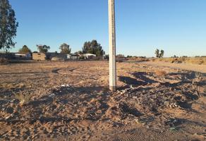 Foto de terreno habitacional en venta en principal , lázaro cárdenas, mexicali, baja california, 0 No. 01