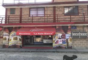 Foto de edificio en venta en privada 6 b sur 1, pedregal de guadalupe hidalgo, puebla, puebla, 13277744 No. 01