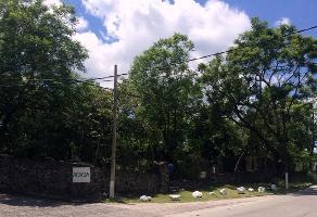 Foto de terreno habitacional en venta en privada acacia , pedregal de las fuentes, jiutepec, morelos, 0 No. 01