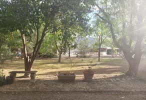 Foto de terreno habitacional en venta en privada centenario 3, arteaga centro, arteaga, coahuila de zaragoza, 0 No. 01