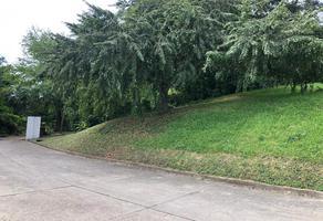 Foto de terreno habitacional en venta en privada ciruelo , flamboyanes, tampico, tamaulipas, 0 No. 01