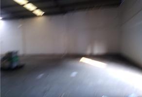 Foto de bodega en renta en  , privada cumbres, monterrey, nuevo león, 15220751 No. 01