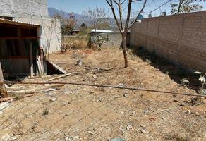 Foto de terreno habitacional en venta en privada de encinos 21, forestal, santa maría atzompa, oaxaca, 0 No. 01