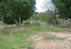 Foto de terreno habitacional en venta en privada de josé g parres , centro jiutepec, jiutepec, morelos, 0 No. 01