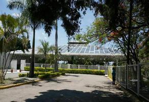 Foto de terreno habitacional en venta en privada de la hondonada , san gaspar, jiutepec, morelos, 18356810 No. 01