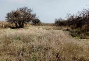 Foto de terreno habitacional en venta en privada de los pinos , san mateo cuanala, juan c. bonilla, puebla, 0 No. 01