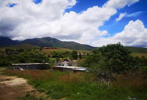 Foto de terreno habitacional en venta en privada de ricardo guutaa , san andres huayapam, san andrés huayápam, oaxaca, 0 No. 01